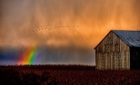Photography of a barn, wheat field, and a rainbow by PM.